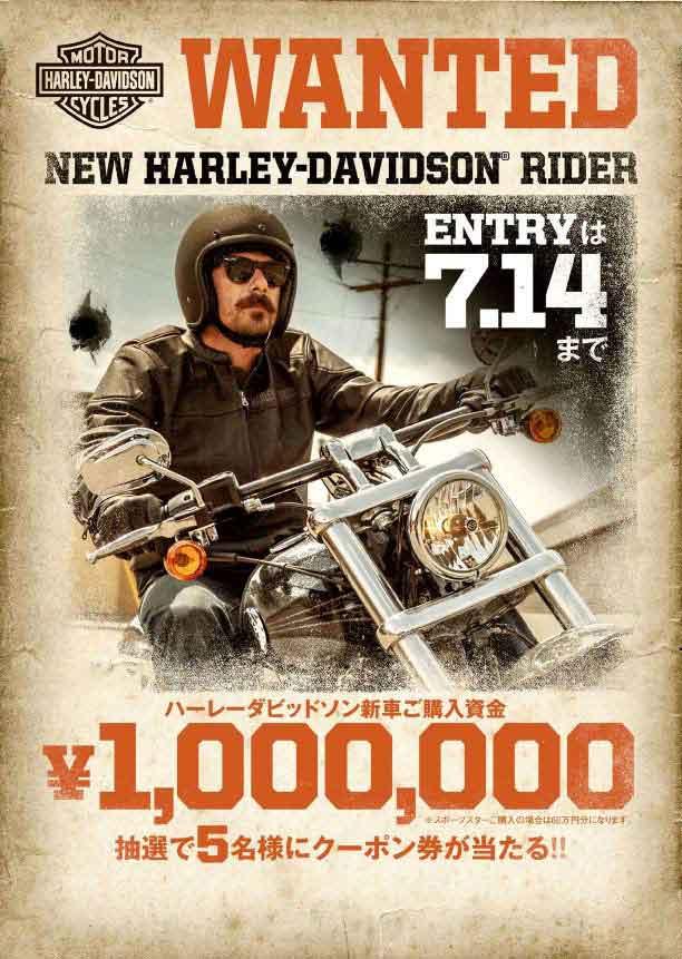 WANTED NEW HARLEY-DAVIDSON RIDER