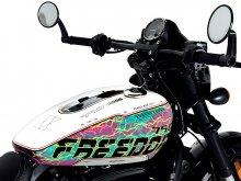 """【ハーレー】WEB限定モデル!「STREET ROD(R)""""FREEDOM""""EDITION designed by GraphersRock」の受注を開始"""
